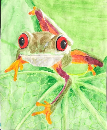 An old watercolour (about seven years) of a tree frog