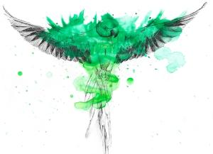 parrot-ink-with-splatter