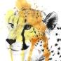 Cheetah Ink With Splatter