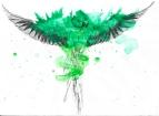 Parrot Ink With Splatter