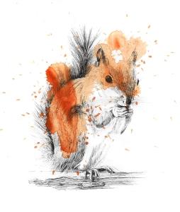 squirrel-ink-with-splatter