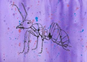 Ant Ink on Watercolour