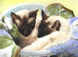 Dash and Leia Watercolour