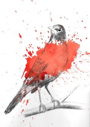 A pretty little robin