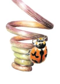 Ladybug - 5x7 Coloured Pencil