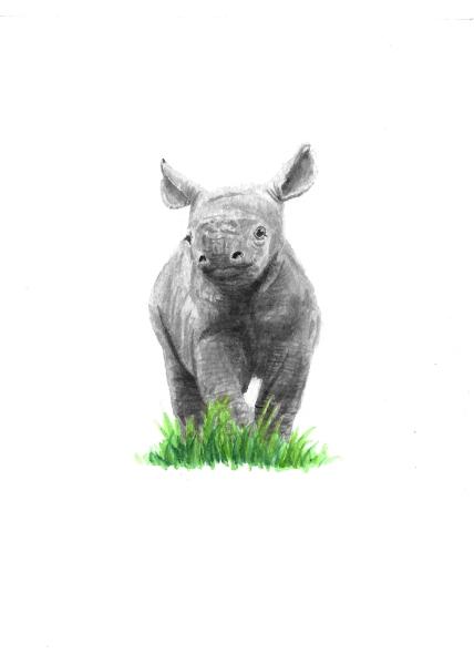 Baby Rhino - 5x7 Watercolour