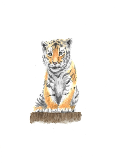 Baby Tiger - 5x7 Watercolour
