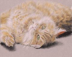 A more recent work. I'd say I've improved a bit, and I'm starting to get closer to where I want to be with my coloured pencil work.