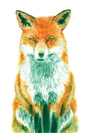 Dualchrome Fox - 8x10 Watercolour