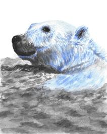 Dualchrome Polar Bear - 8x10 Watercolour