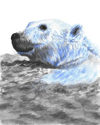 Dualchrome Polar Bear