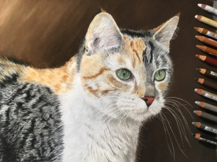 My third pastel pencil drawing. I improved a lot, in part because I used a paper more suited to pastels