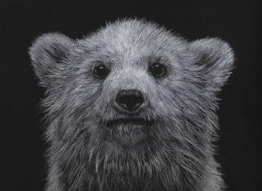 An adorable polar bear cub