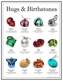 Bugs and Birthstone Posters - $40 CAD + Shipping