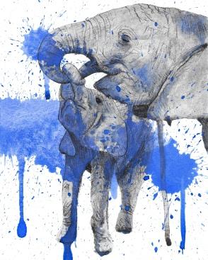 Elephant splat test 1