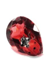 January: Garnet - Ladybird