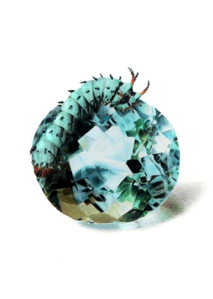 March: Aquamarine - Hickory Horned Devil