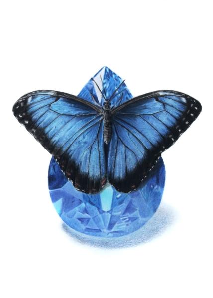 September: Sapphire - Blue Morpho